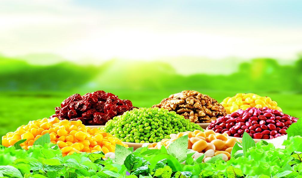 对食品行业定制的包装解决方案